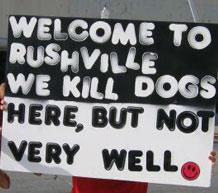 We Kill Dogs