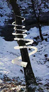 Andy Goldsworthy - Tree and Ice