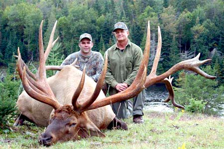 Idaho Bull Elk