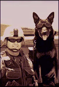 Soldier and War Dog
