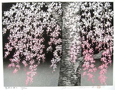 Hajime Cherry Tree