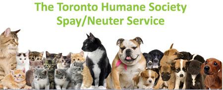 Toronto Humane Society Spay Neuter Service